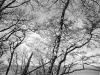 John Wimberley Klamath River 37 2008