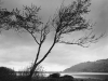 John Wimberley Klamath River 88 2008